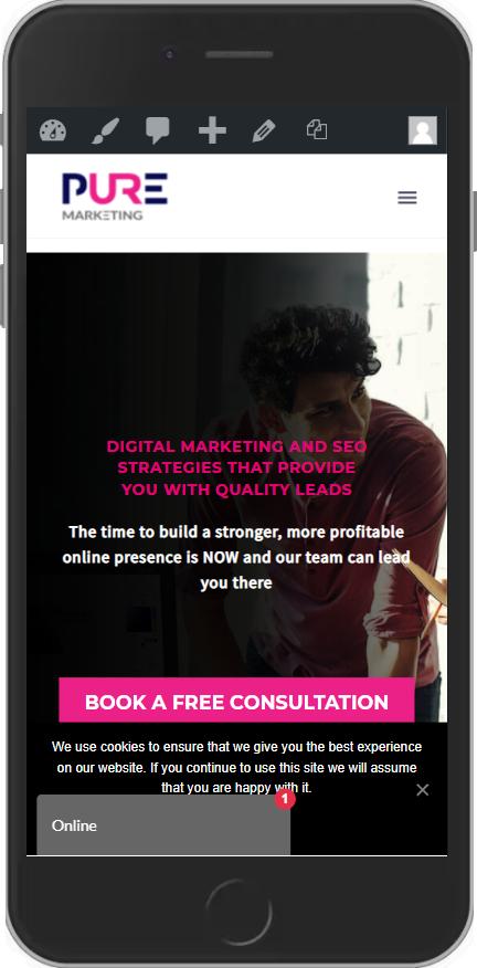 Pure Marketing - Website Design - Mobile Phone 3