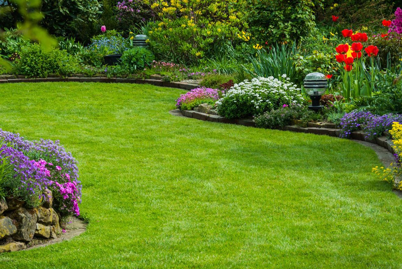 01, Pure Marketing - Landscape Gardener Marketing Agency SQ