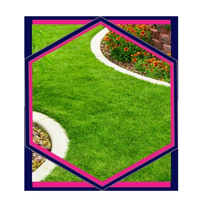 09, Pure Marketing - Landscape Gardener Marketing Agency HX